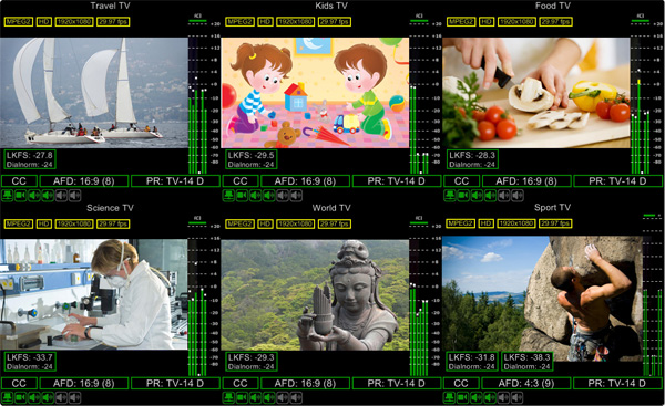 Cinegy Multiviewer 12 optimized 73