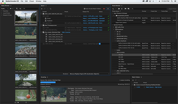 Veriscope adobe media encoder